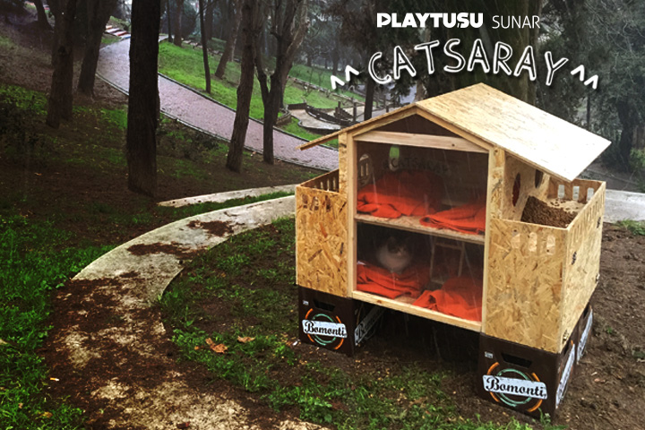 PLAY TUŞU SUNAR: CATSARAY