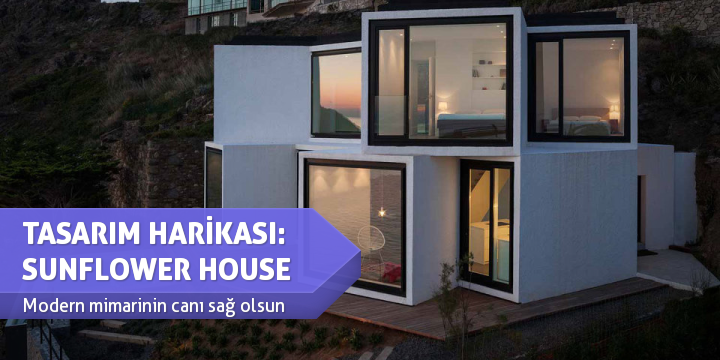 TASARIM HARİKASI: SUNFLOWER HOUSE