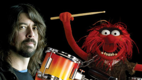 DAVE GROHL VE ANIMAL KAPIŞTI
