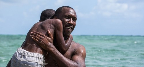 MOONLIGHT'IN YÖNETMENİ BARRY JENKINS'TEN DİZİ