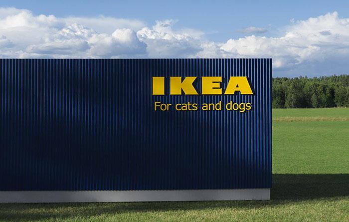 IKEA'DAN BU SEFER HAYVAN DOSTLARIMIZA ÖZEL MOBİLYA SERİSİ