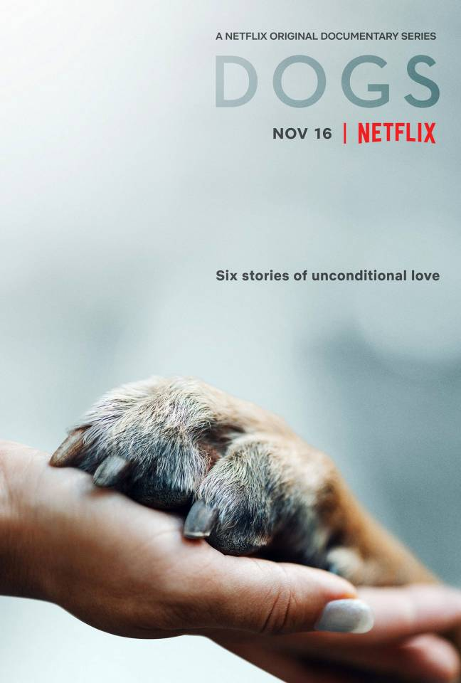 netflix-dogs-poster