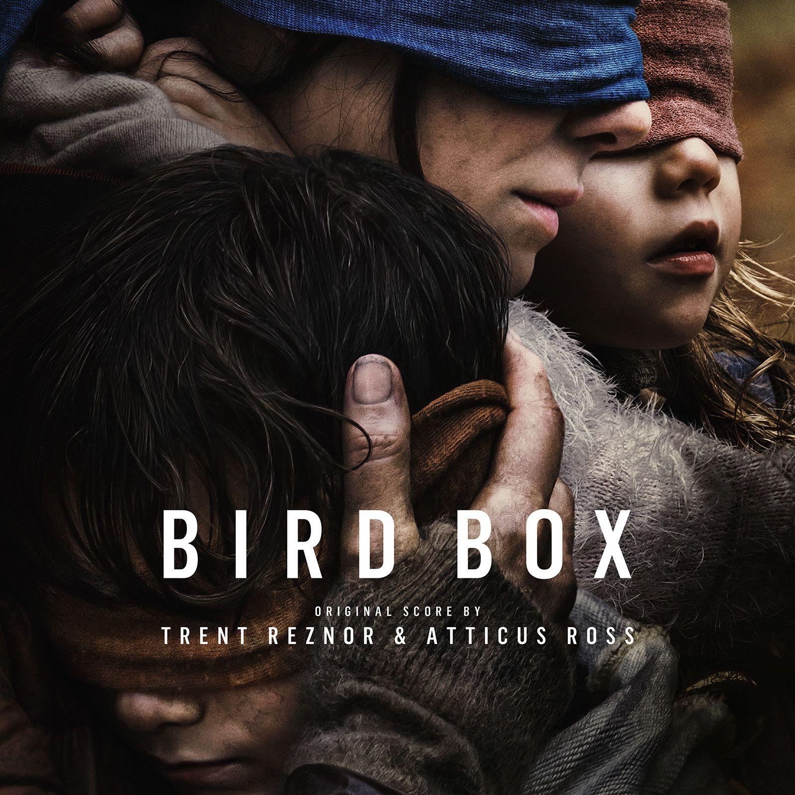 Bird-Box-score