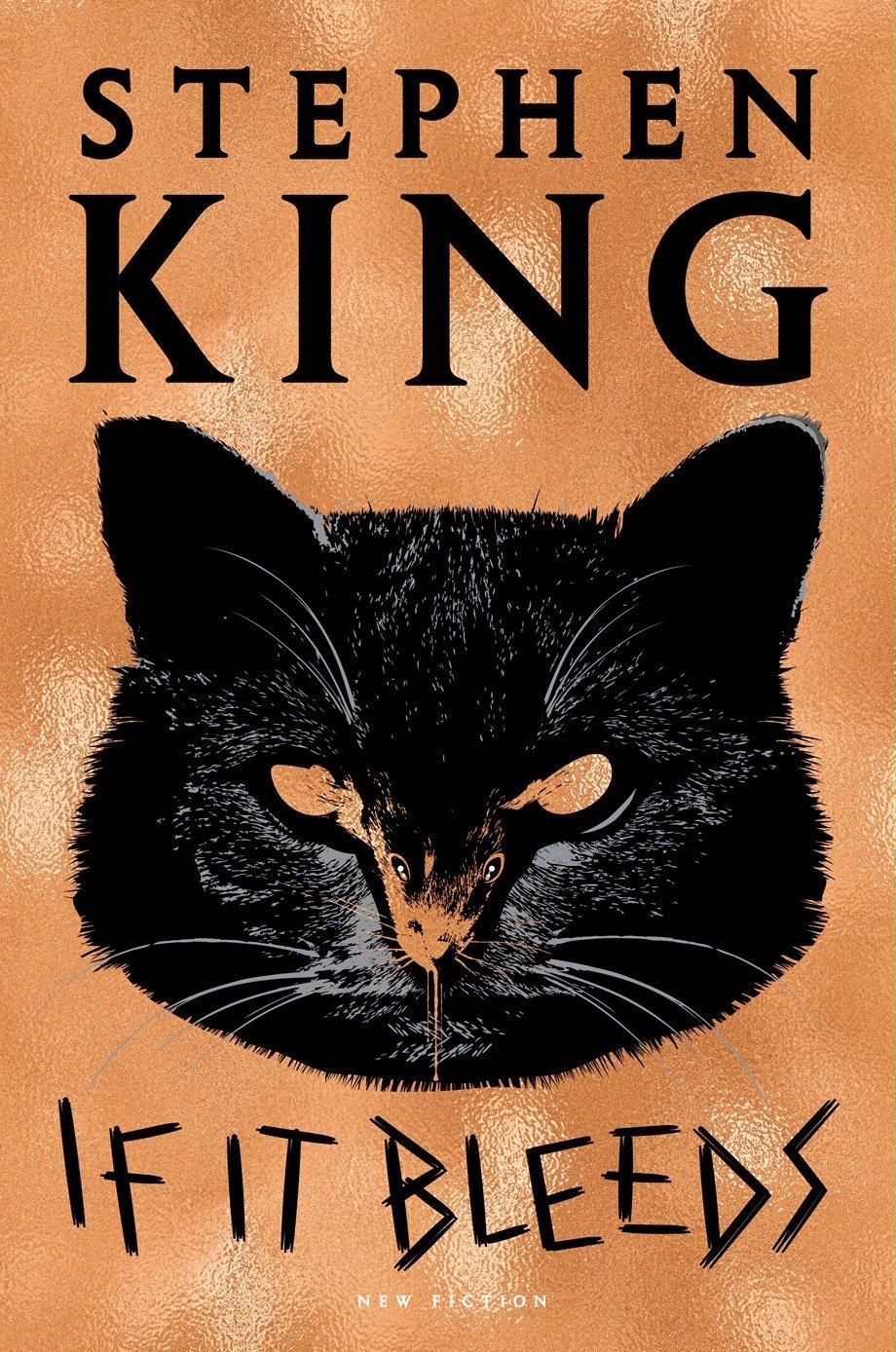 stephen king durmak bilmiyor, yeni roman serisi holly gibney geliyor