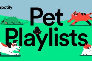 spotify evcil hayvanlar için çalma listeleri hazırladı