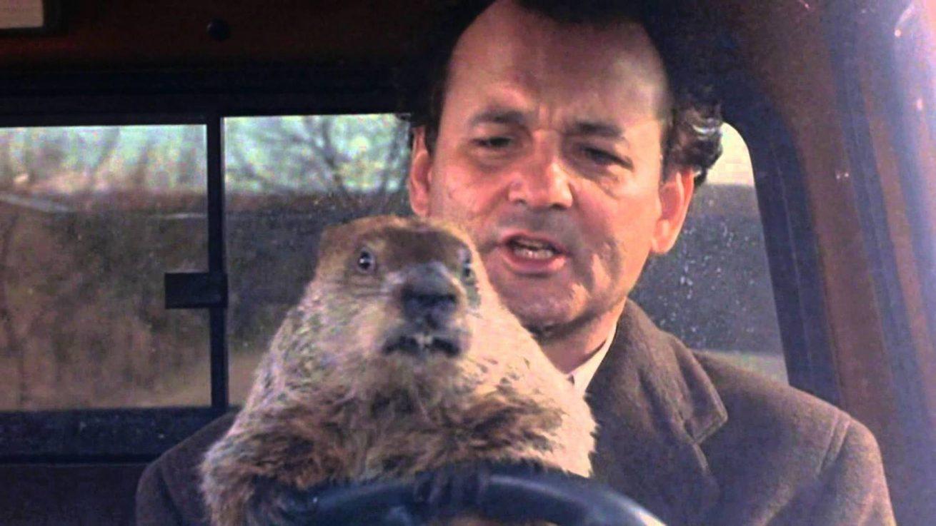 groundhog day'in dizisi için çalışmalar başladı